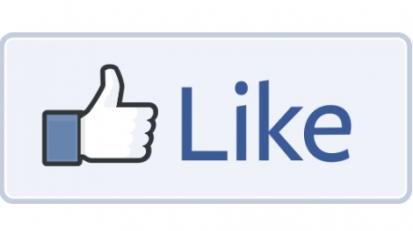 Facebook - like - 1